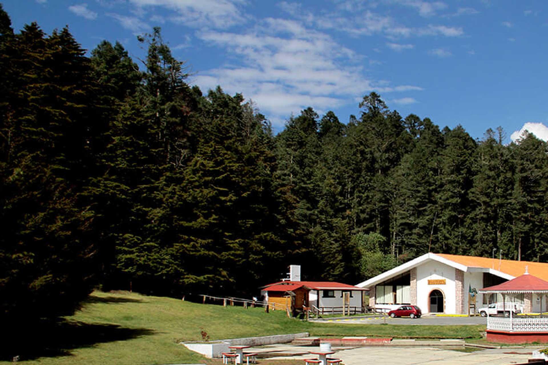 Parque-Nacional-El-Chico