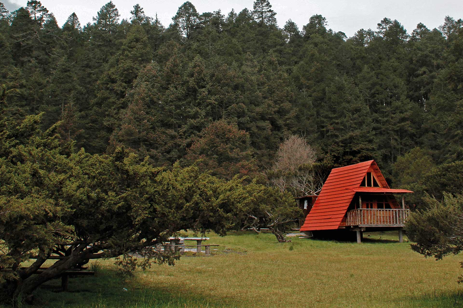 Parque-Nacional-El-Chico2